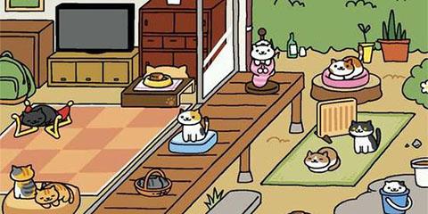 《猫咪后院》猫咪喜爱的玩具图文鉴赏攻略