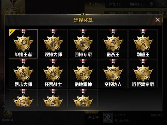 战区可选择奖章排名