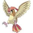 017比比鸟