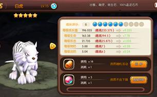 梦幻石器OL白虎宠物战斗能力详细分析 详解怎么玩