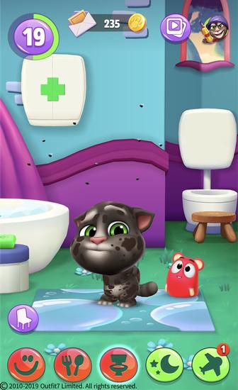 脏兮兮的汤姆猫需要洗澡