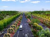 丰乐河大道即将开建 明年秋季可穿过城市花海去肥西
