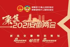 聚焦2021安徽两会