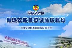 安徽自贸试验区如何建?省政协邀您建一言