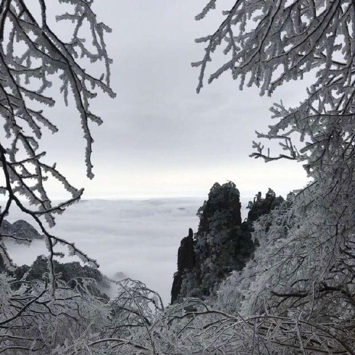 黄山的雪后 美的颠覆想象