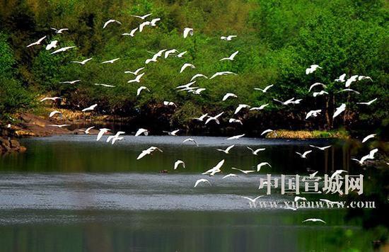 青龙湾原生态旅游度假区。