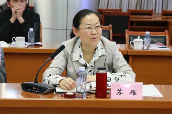 安徽省商务厅开发区处副处长苏雁发言
