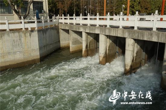 图为双墩泵站提水现场