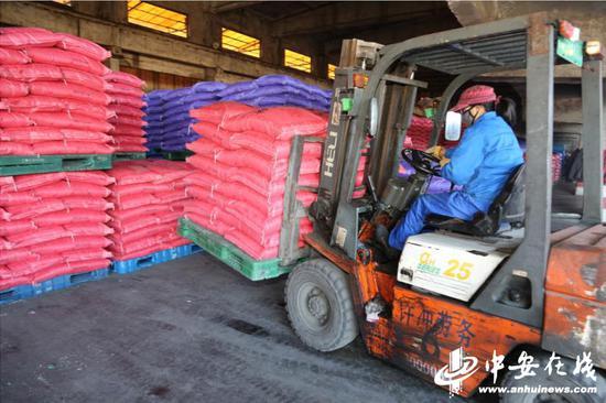 叉车正在装运铜陵西运往哈尔滨的春耕化肥 摄影 叶晓刚