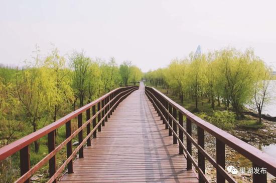 马尾河湿地