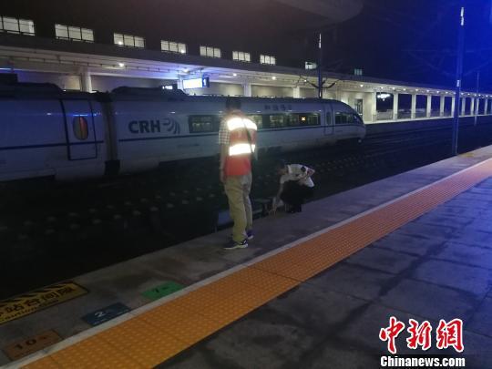 地震发生后,成渝高铁璧山站工作人员检查车辆设备。 钟欣 摄