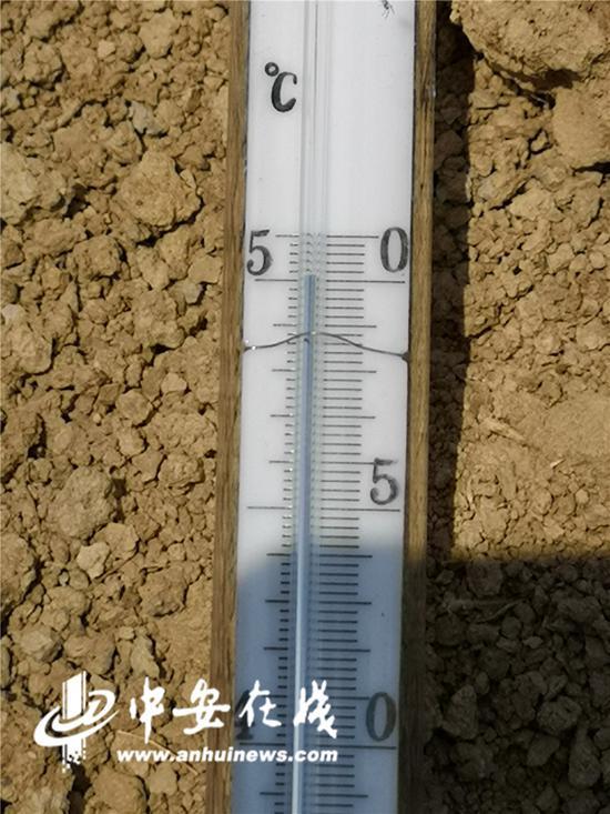 泥土地的地表温度很快就上升到了50℃