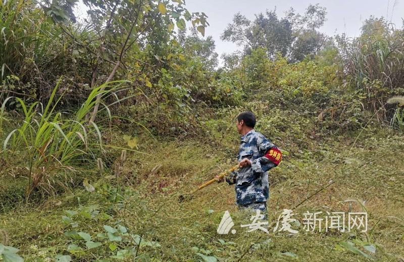 """""""森林卫士""""们日均徒步10公里守护绿色"""