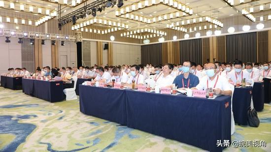 安徽在湾沚举行全省园区非公企业党建工作现场会