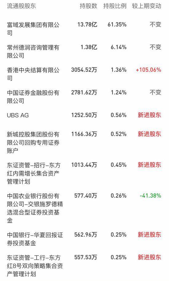 截至2019年一季度末,新城控股的十大流通股股东。