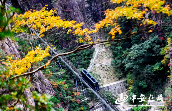 黄山风景区进入秋色最佳观赏期