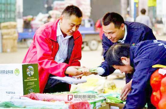 刘勇(左一)和刘志刚(左二)查看蔬菜