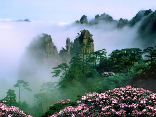 黄山风景区(图源:黄山市文化和旅游局)