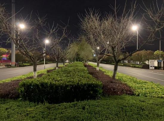 太平府路夜间照明效果