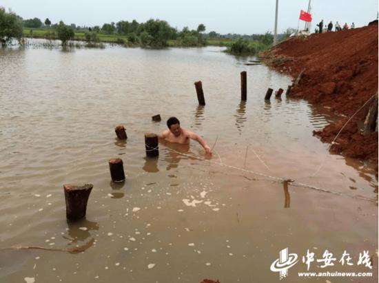 2016年,张利民跳入水中打桩堵管涌
