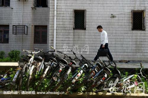堆放在校园路边的废弃自行车,不仅有碍观瞻,也造成资源浪费。