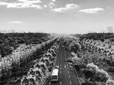 合肥市大蜀山路三里庵路和丰乐河大道拟开建