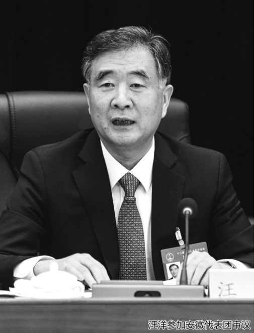 汪洋参加安徽代表团审议