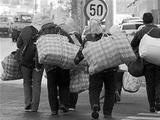 合肥五类失业人员参加职业培训可享受补贴