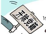 滁州一村支书被开除党籍 不给好处符合规定也不办