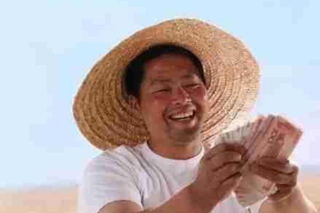 安徽农民人均可支配收入6816元 位居中部六省之首