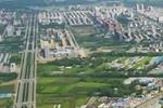 """安徽定远:6米4 仙人柱成了""""擎天柱"""""""