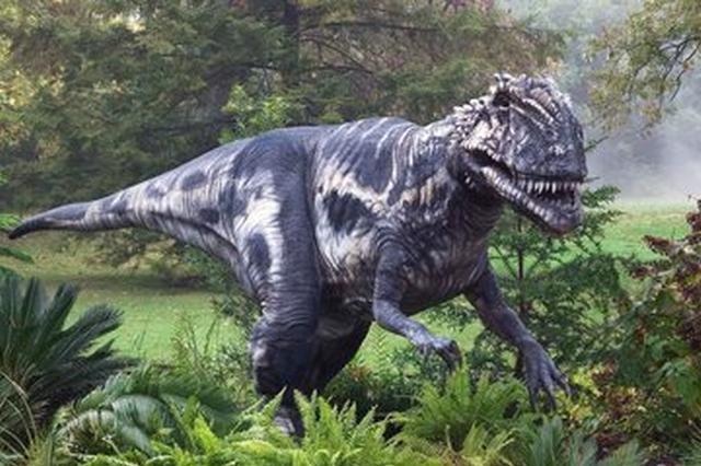 """安徽重大发现:恐龙或许也会""""流泪"""""""