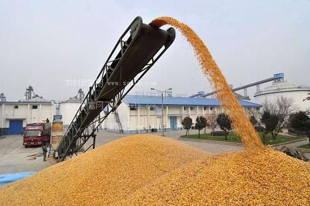 十四连丰 2017年安徽省粮食总产695.2亿斤