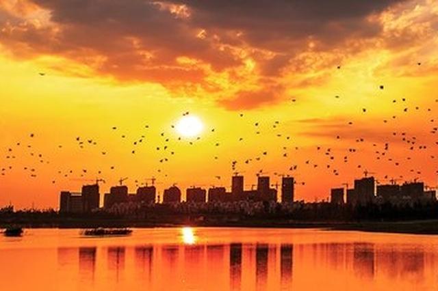"""安徽这9个市县将成为国字号""""示范县"""""""