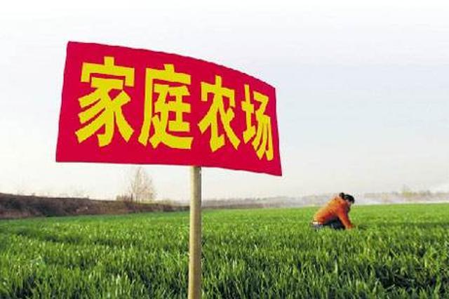 安徽有8.9万个家庭农场 数量全国第一