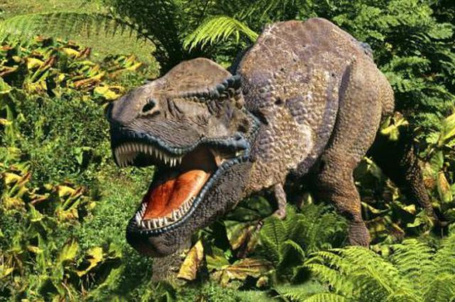 非鸟类恐龙有没有盐腺 安徽省科学家发现最早化石证据