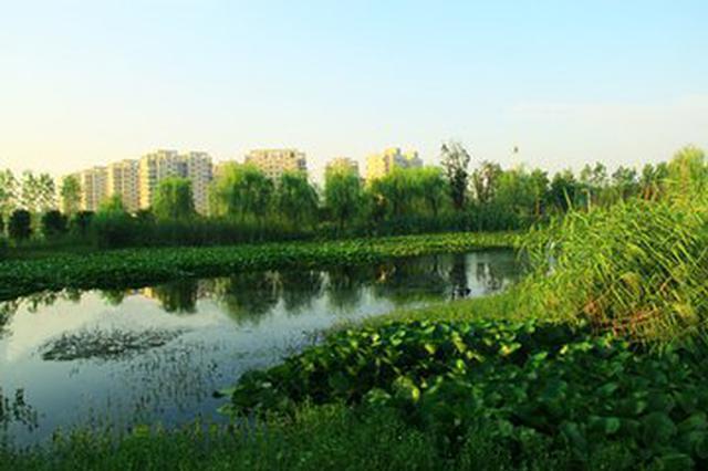 潭冲河生态湿地公园今年计划开工