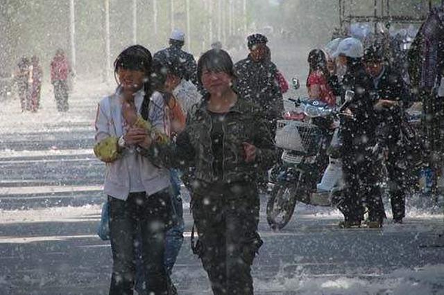 阜阳市杨树种植锐减 今年杨絮纷飞将有改观