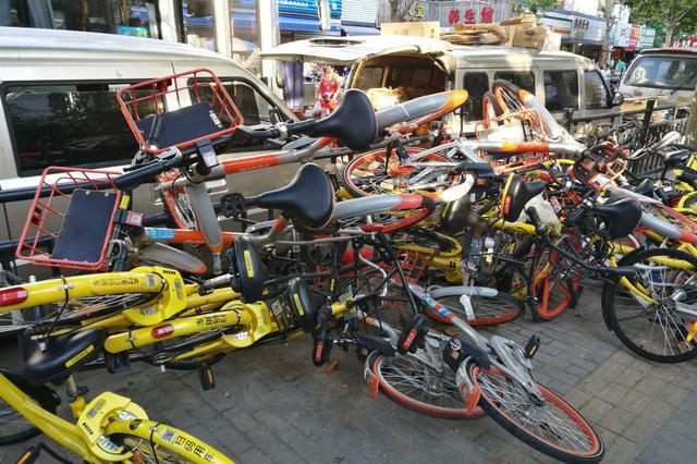 """合肥多部门昨联合对政务区238辆共享单车""""开罚"""""""