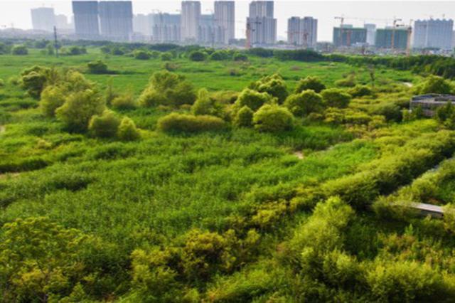 2020年 芜湖20%城市建成区达海绵城市建设要求