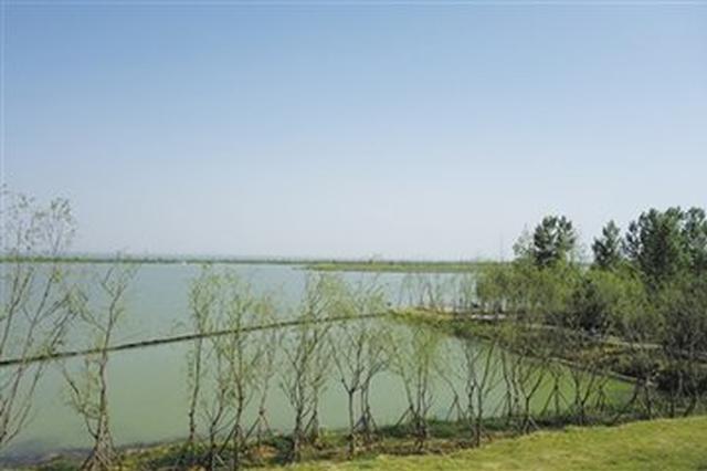 合肥积极整改恢复巢湖湿地 控制入湖污染量