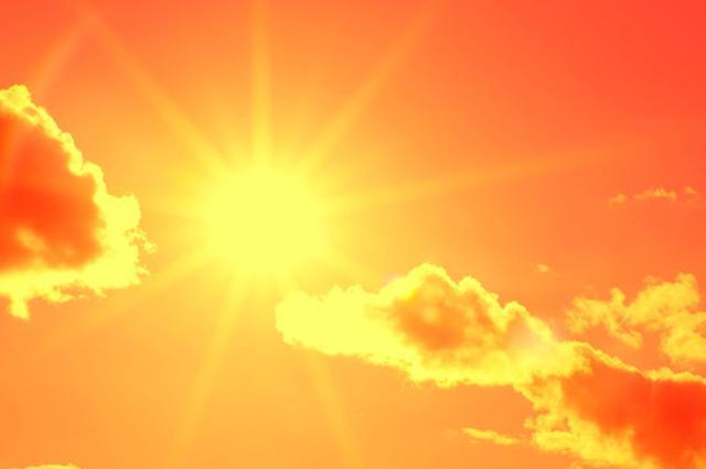 中科大教授研究成果:日光照射能改善学习记忆