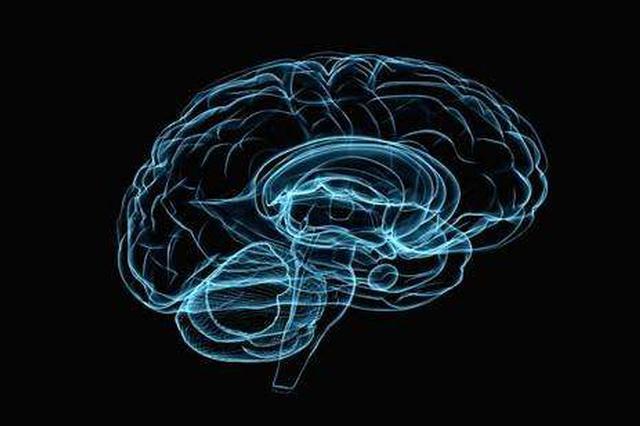 第二届中国(合肥)类脑智能高峰论坛周五开幕
