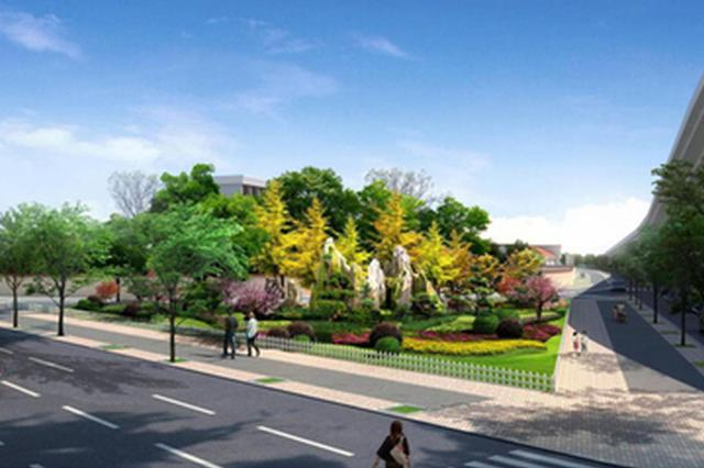 合肥城区绿化将停用杨树 现有杨树逐步更换