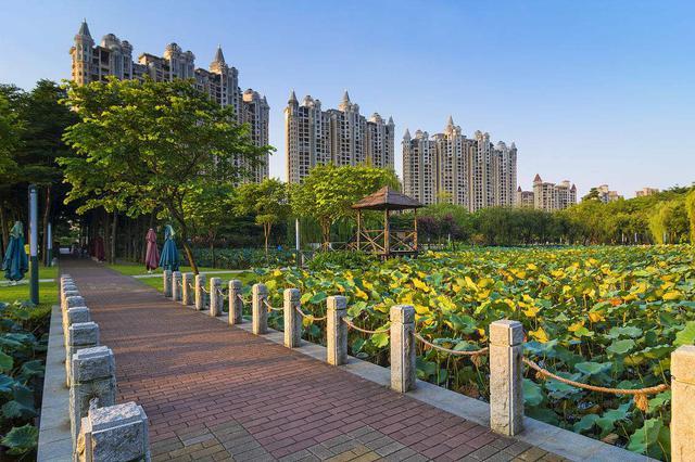 合肥大房郢水库旁将添27万平米城市公园
