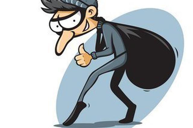 小偷出门行窃对妻子谎称上班 偏僻处换衣躲避监控