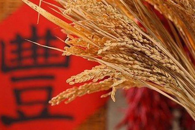 """中国又多了个节日 农历秋分设为""""中国农民丰收节"""""""