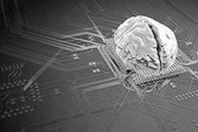 合肥成立类脑智能创新中心