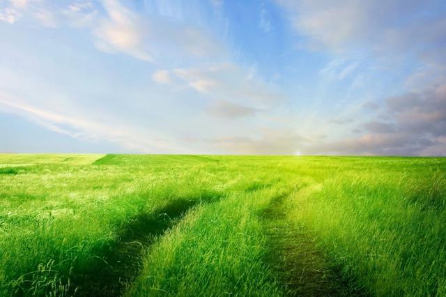安徽开展自然保护地大检查 推进自然保护地体系建设