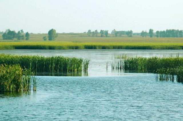 黄陂湖将综合治理 未来可去体验滨湖湿地休闲游